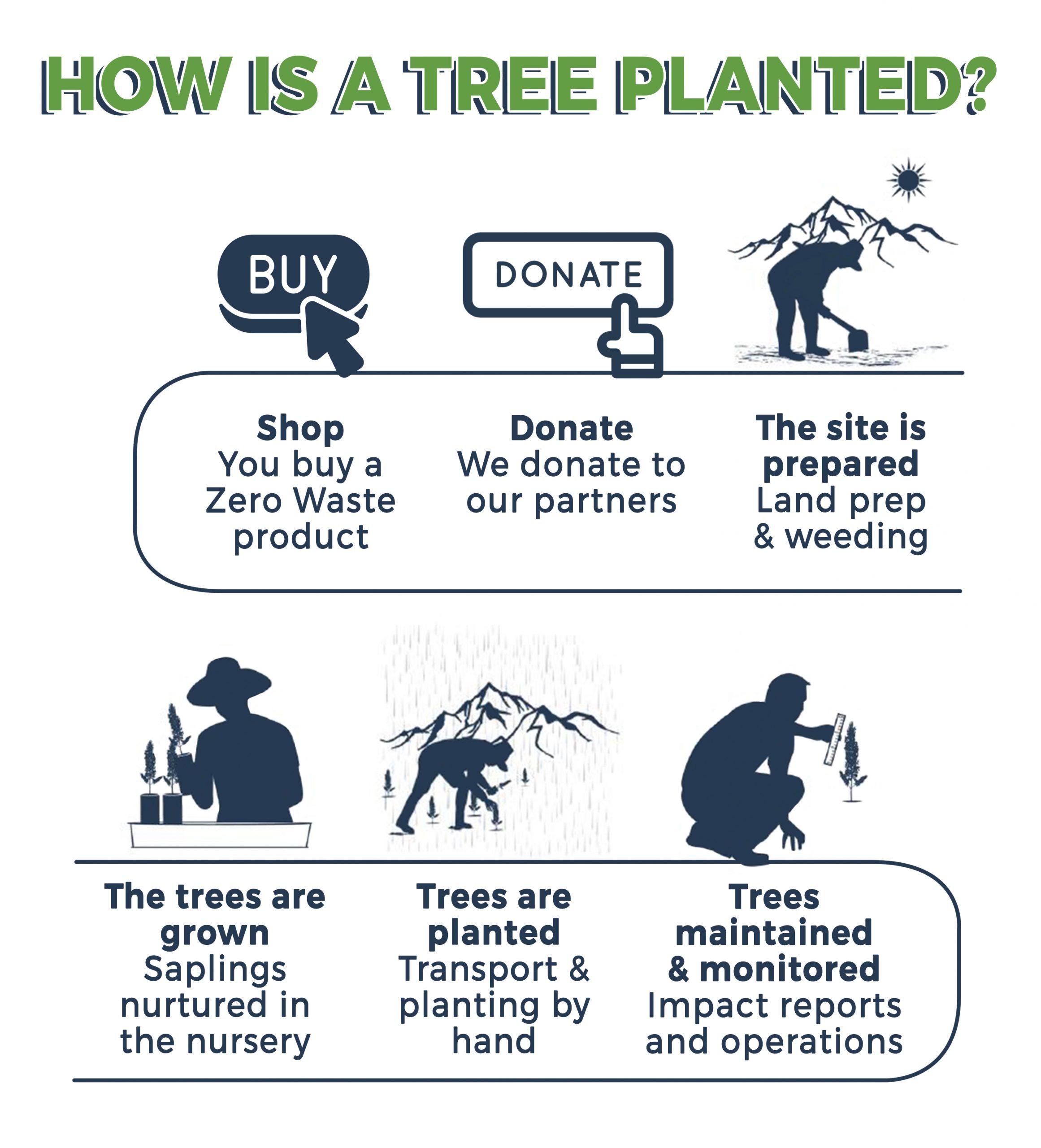 ZERO WASTE INITIATIVE - ZEROWASTEINITIATIVE.COM TREE PLANNED STORY 1